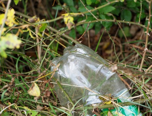 Single-Use Plastic – The Arguments and the Alternative